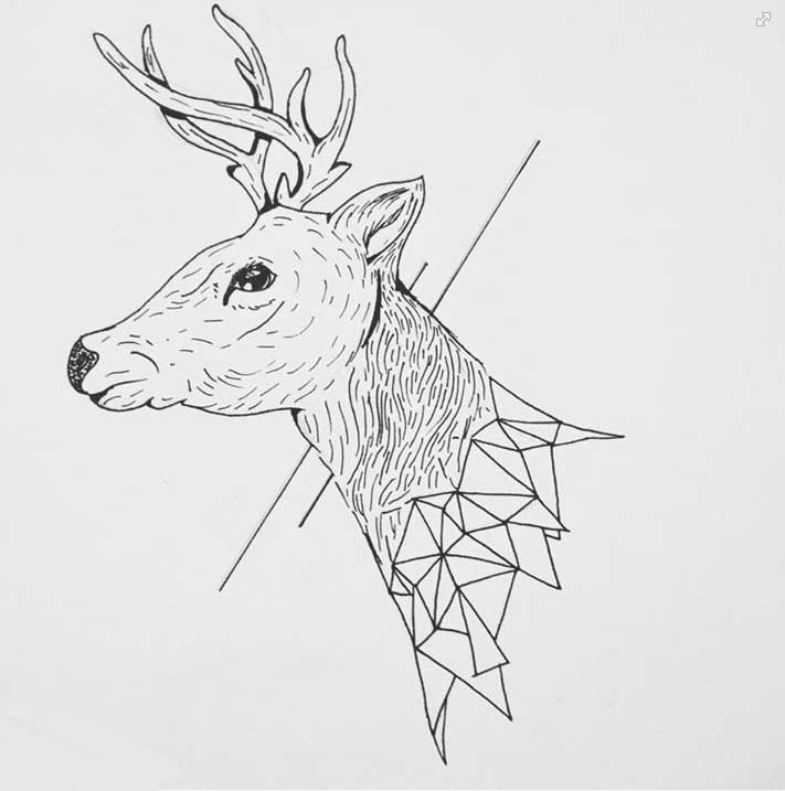 ciervo-3